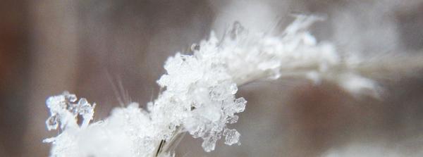 Schneeflocke2