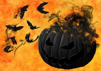 pumpkin-988231_960_720
