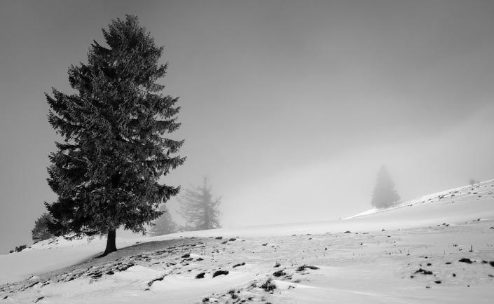 landscape-1971050_960_720