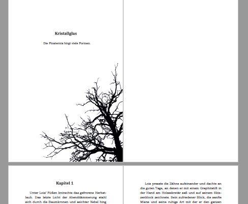 GF - Buchsatz Entwurf